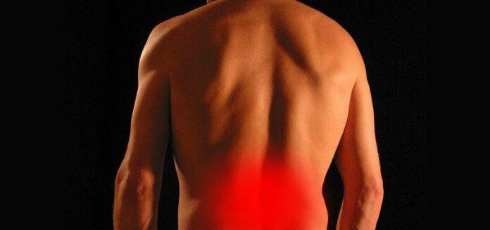 Rückenschmerzen im Büro: Bildlich dargestellt durch roten Bereich